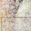 Motif floral détail